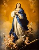 ¡¡¡Ricky Martin compara a la Virgen María con un vientre de alquiler!!!